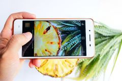 Mains femelles photographiant la texture de fond d'ananas Image libre de droits