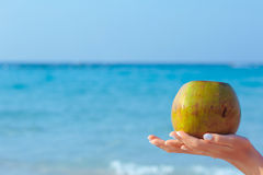 Mains femelles tenant la noix de coco sur le fond de mer Photographie stock libre de droits