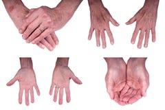 Mains, femme aîné mûr d'isolement sur le blanc Image libre de droits