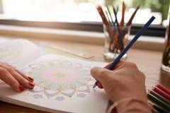 Mains humaines dessinant dans livre de coloriage adulte image stock