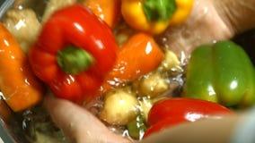 Mains lavant le paprika et les pommes de terre banque de vidéos