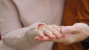 Mains neuf de fixation de ménages mariés Les jeunes couples dans l'amour marchant pendant l'automne garent tenir des mains Amants Images libres de droits