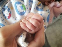 mains nouveau-nées de bébé et de mères avec le foyer mou Photos libres de droits