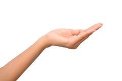 Mains ouvertes de femme Images libres de droits
