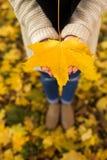 Mains ouvertes de fille avec les feuilles jaunes Photo libre de droits