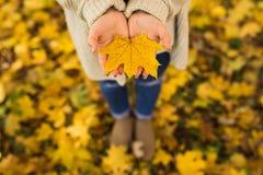 Mains ouvertes de fille avec les feuilles jaunes Images libres de droits