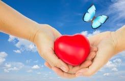 Mains retenant le coeur rouge Image libre de droits