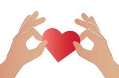 Mains tenant le coeur rouge Photos libres de droits