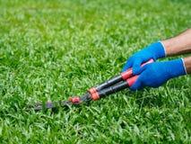 Mains tenant les ciseaux de jardinage sur l'herbe verte C de jardinage Image libre de droits
