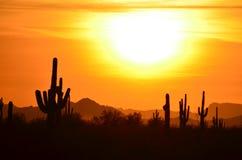 Mains tenues sur le ciel, ensembles d'un dieu soleil, désert de Sonoran : Vallée du Sun images stock
