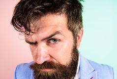 Maintenez les cheveux rangé et le soin au sujet de la coiffure Équipez le hippie barbu sur le fond strict de bleu de rose de visa photos libres de droits