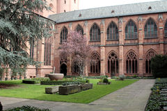Mainz Cathedral Stock Photography