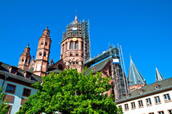 Mainz Cathedral with tree Stock Images