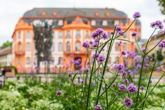 Mainz `Schillerplatz` with the `Fastnachtsbrunnen` and `Osteiner Hof` and flowers in the foreground.  Stock Images