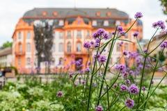 Mainz ` Schillerplatz ` met ` Fastnachtsbrunnen ` en ` Osteiner Hof ` en bloemen in de voorgrond Stock Afbeeldingen