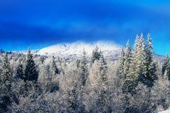 A maioria da montanha coberta com a neve Foto de Stock