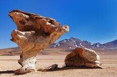 A maioria de beautifull Andes em Bolívia Imagem de Stock