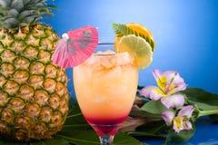 A maioria de série popular dos cocktail - MAI TAI Fotografia de Stock