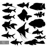 A maioria de silhuetas populares dos peixes do aquário Fotografia de Stock