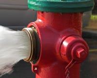 Mais água Foto de Stock