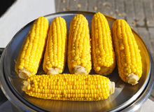 Mais auf Pfeiler Stockfotografie