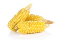 Mais auf weißem Hintergrund Lizenzfreie Stockfotos