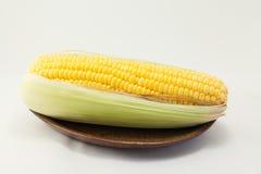 Mais auf weißem Hintergrund Lizenzfreies Stockbild