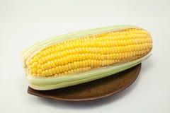 Mais auf weißem Hintergrund Stockfotografie
