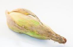 Mais auf weißem Hintergrund Lizenzfreies Stockfoto