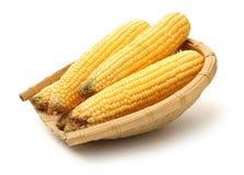 Mais auf wei?em Hintergrund lizenzfreies stockbild