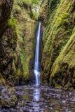 Mais baixas as quedas luxúrias e verdes de Oneonta Foto de Stock