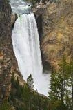 Mais baixas quedas de Yellowstone, parque nacional de Yellowstone, Wyoming Imagem de Stock
