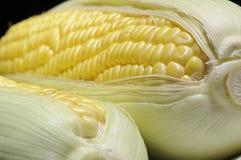 Mais, biologisches Lebensmittel Stockfotografie