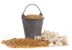 Mais in a bucket Royalty Free Stock Image