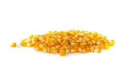 Mais del cereale Fotografie Stock