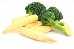 Mais e broccolo di bambino freschi Immagini Stock