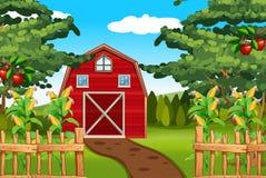 Mais e mele sull'azienda agricola royalty illustrazione gratis