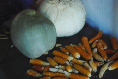 Mais e zucche Fotografie Stock Libere da Diritti