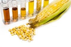 Mais erzeugte Äthanolbiologischen brennstoff mit Reagenzgläsern auf weißem backgrou Lizenzfreie Stockfotos