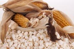 Mais et maïs éclaté Image stock