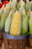 Mais für Verkauf in einem Korb stockbilder