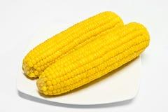 Mais ist die natürliche Nahrung Lizenzfreies Stockbild