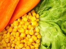 Mais, Karotte, Kopfsalat lizenzfreie stockbilder