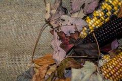 Mais-Maisviertel stockbild