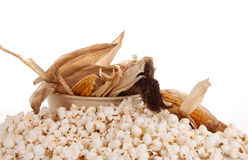 Mais and popcorn Stock Image