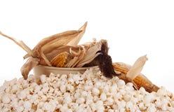 Mais and popcorn Stock Image
