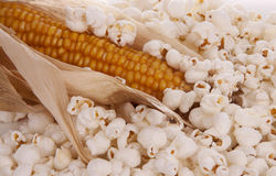 Mais and popcorn Stock Images