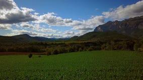 Mais und Berge stock footage