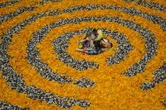 Mais und Blumen Lizenzfreies Stockbild