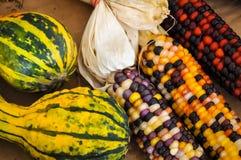 Mais und Kürbisse Lizenzfreie Stockfotos
